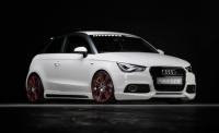 Аэродинамический обвес Rieger для Audi A1 2010-...г.в.